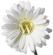 WordPress Spring Flower