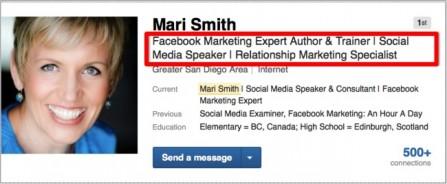 Mari Smith LinkedIn Headline