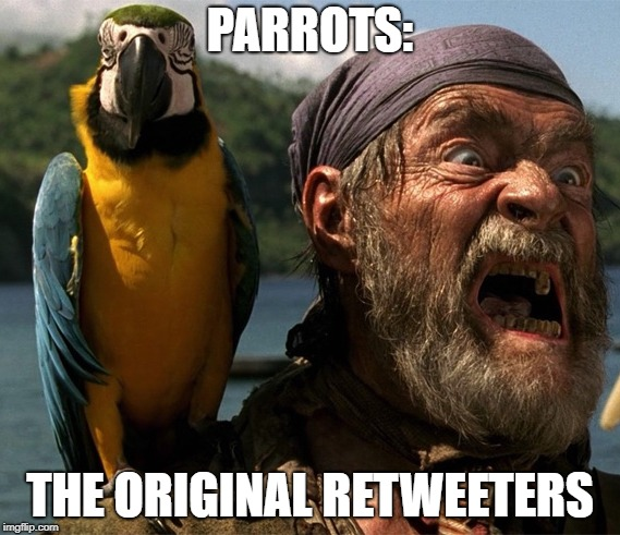 Parrots, The Original Retweeters Meme