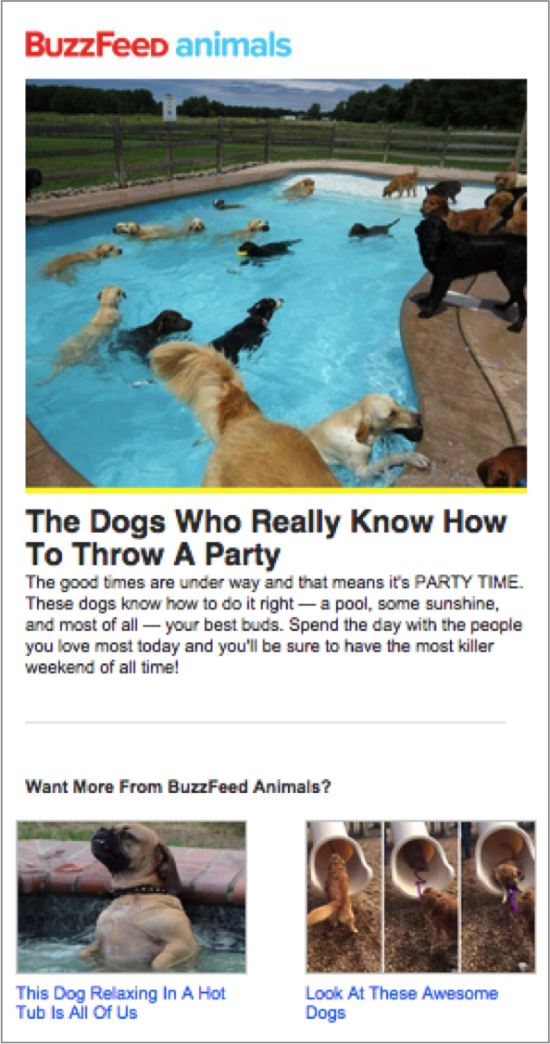 BuzzFeed Email Marketing