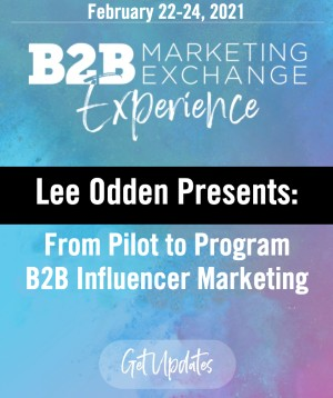 B2B Marketing Exchange Experience 2021