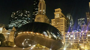 The Bean #SESCHI