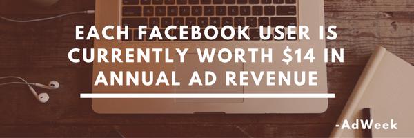 facebook-users-net-worth-revenue