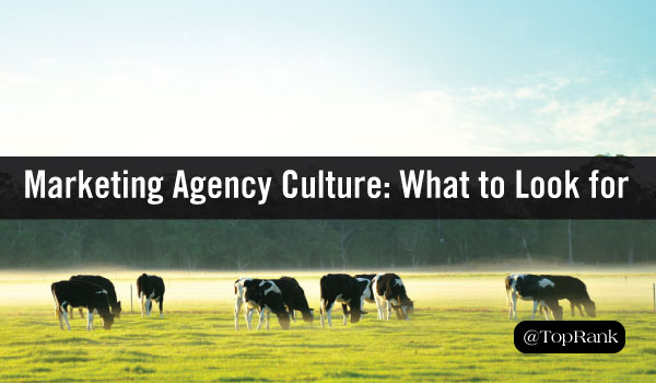 Cows to Content: 6 Marketing Agency Culture Lessons I Learned on the Farm