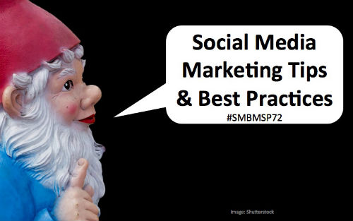 Social Media Gnome