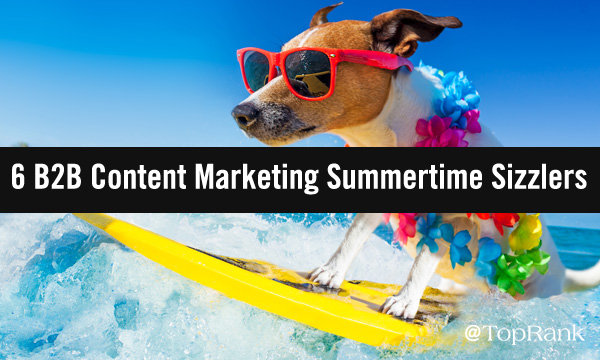 Dog surfing in the summer of B2B marketing image.